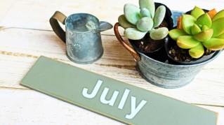 【New】7月スケジュール公開のお知らせ